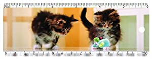 """Gift Trenz Design Kittens with Mouse Bookmark with 6"""" Ruler and Eraser"""