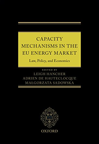 capacity-mechanisms-in-the-eu-energy-market-law-policy-and-economics