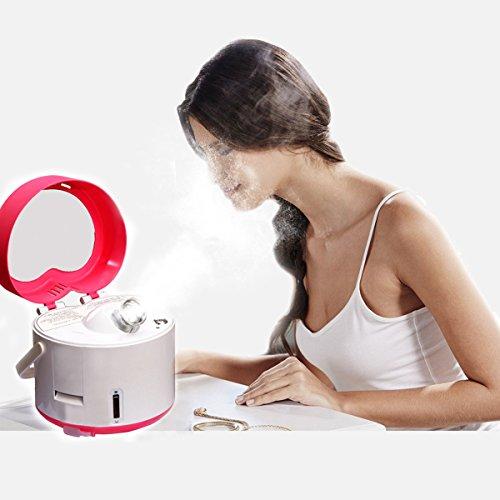Besmall 220V Vapore Sauna SPA Nano-ion Macchina Cura per Faccia Viso Bellezza Donna 380W Spray Machine Face Steamer