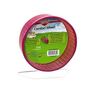 Kaytee Small Comfort Exercise Wheel, 5.5-Inch, Colors Vary