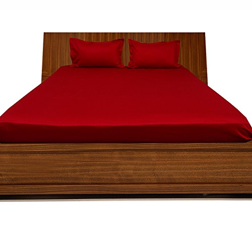 royallinens-single-extra-long-300tc-100-egyptian-cotton-blood-red-solid-elegant-finish-3pcs-fitted-s