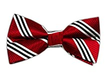 100% Silk Woven Red Striped Self-Tie Bow Tie