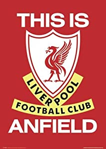 Liverpool FC - This is Anfield - Maxi Poster - 61 cm x 91.5 cm by Easyart.com