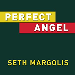 Perfect Angel Audiobook