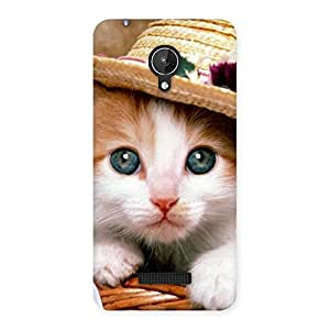 Ajay Enterprises Ft Hats Cat Multocols Back Case Cover for Micromax Canvas Spark Q380