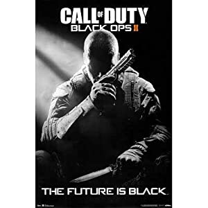 (22x34) Call of Duty: Black Ops 2 - Stealth Video Game Poster