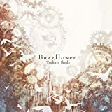 Buzzflower