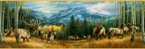 Cheap SunsOut Backcountry Elk 500pc Jigsaw Puzzle by Rosemary Millette (B004HSAOB6)