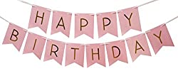 Pastel Happy Birthday Bunting Banner - Birthday Decorations by Sterling James Company