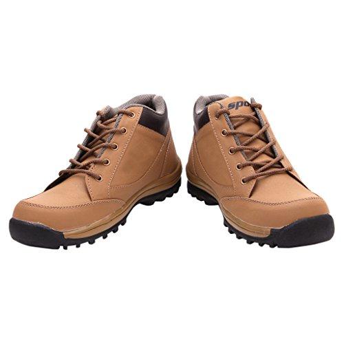 FBT Men's 1620 Beige Casual Shoes