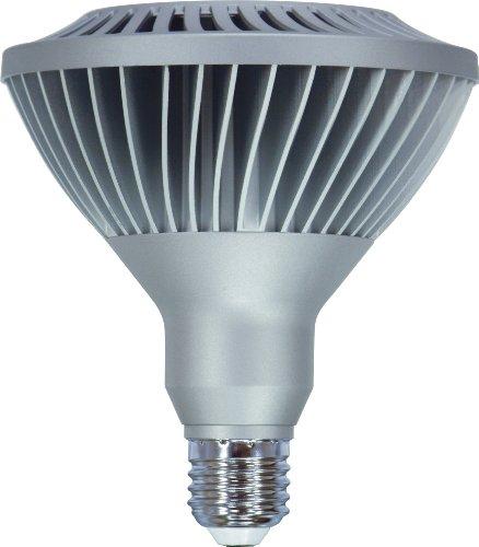 ge 61927 20 watt led medium base 1050 lumen outdoor flood par38 light bulb warm white. Black Bedroom Furniture Sets. Home Design Ideas