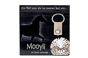 NEU Mooyli - Befüllen Sie einen Kristall als besondere Erinnerung. Ob Baby's erste Locke - Geburt, Taufe - der Wein der eigenen Hochzeit, die Haare oder das Fell Ihrer Haustiere - Katze, Hund, Pferd - oder die Asche eines lieben Verstorbenen - Trauer. Ver