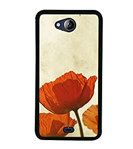 Beautiful Orange Flowers 2D Hard Polycarbonate Designer Back Case Cover for Micromax Canvas Play Q355