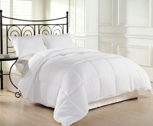 Chezmoi Collection Heavyweight Filled Goose Down Alternative Comforter, Queen/Full, White