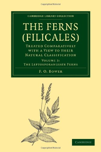 The Ferns (Filicales): Volume 3, The Leptosporangiate Ferns: Treated Comparatively with a View to their Natural Classification (Cambridge Library Collection - Botany and Horticulture)