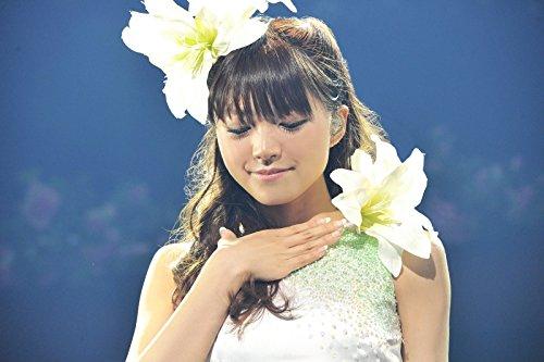 Mimori Suzuko LIVE TOUR 2014 『 大好きっ 』 [Blu-ray]はAmazonでチェック!