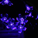 InnooTech Led Fairy Light Battery Blue String Lights 40 Blossom Indoor Outdoor Lighting for Party Wedding Christmas