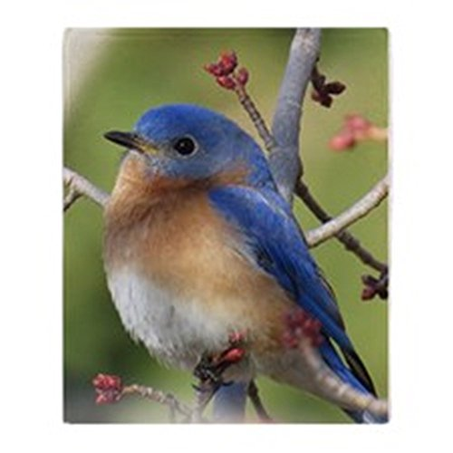 CafePress - Red Bud Bluebird - Soft Fleece Throw Blanket, 50