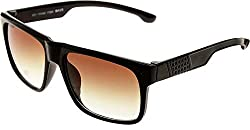 Elijaah Wayfarer Unisex Black Latest Sunglasses 39071_BLACKBROWN