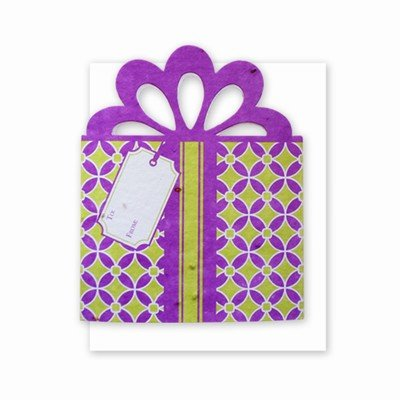 Grow A Note® Gift Card Holder Purple/Green
