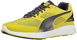 PUMA Men's Ignite Mesh Running Shoe, Sulphur Spring/Periscope, 7 M US