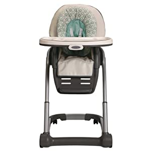 Graco Blossom 4-in-1 Seating System, Winslet