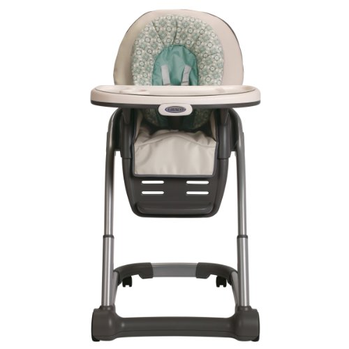 Check Out This Graco Blossom 4-in-1 Seating System, Winslet