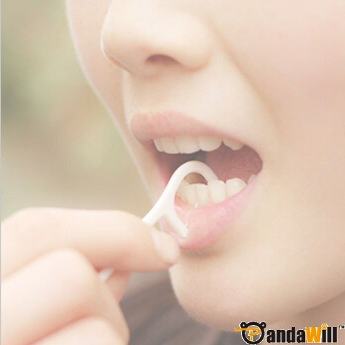 Antimicrobial Environmental Elasticity Dental Floss Toothpick Teeth Cleaning Tool