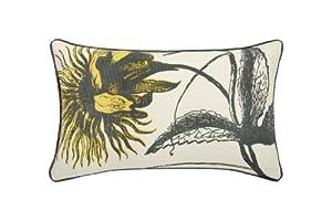 Thomas Paul Sunflower