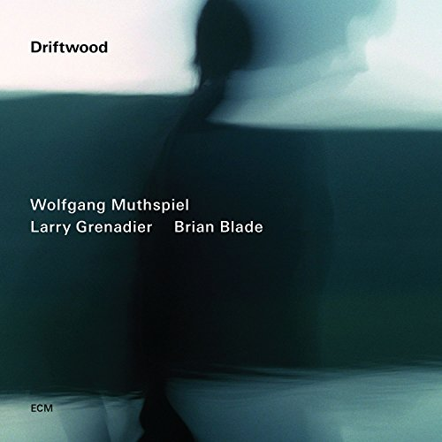 Highline (Wolfgang Muthspiel Driftwood compare prices)