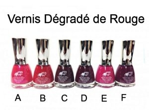 1 VERNIS DEGRADE DE ROUGE 16 ML 6 COULEURS MAQUILLAGE BEAUTE