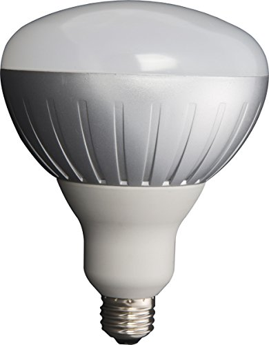 Lithonia Lighting Alebr40 1045L Dim M12 1 1 1 1045 Lumen 2700K Br40 Dimmable Led Light Bulb, Gray