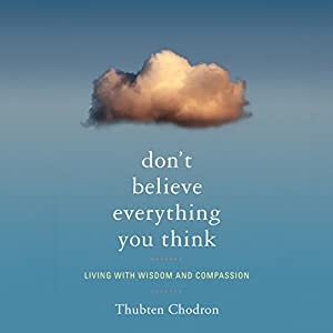 Don't Believe Everything You Think Hörbuch
