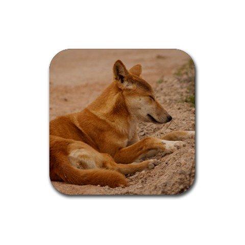 Dingo Rubber Square Coaster (4 pack)