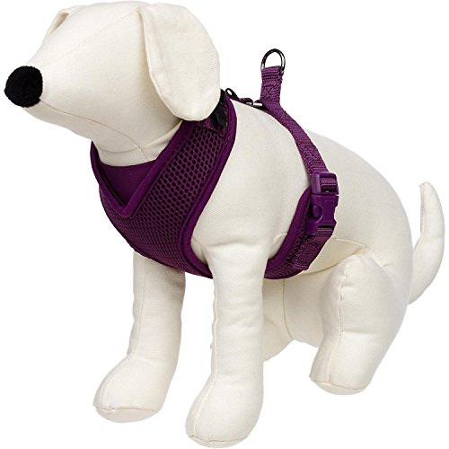 petco-adjustable-mesh-harness-for-dogs-in-plum-by-petco