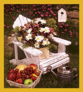 Adirondack Chair Still Life BookmarkAdirondack Chair Still Life Bookmark