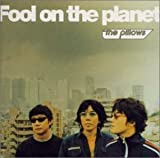 Fool on the planet