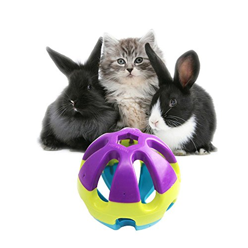 Colorful-Plastic-Pet-Toy-Ball-with-Bell-Dog-Cat-Rabbit-Bauble-293x293x293