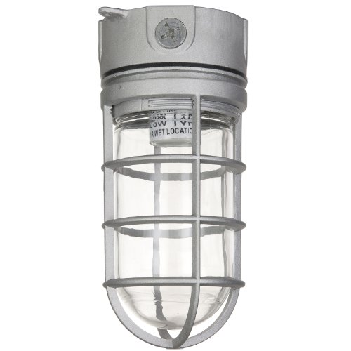 Sunlite VT100 5.5-Inch 100 Watt Vapor Proof Vandal Proof Outdoor Fixture, Metallic Finish Clear Glass