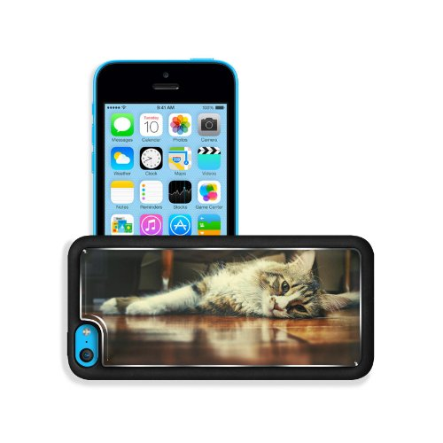 Floor Wood Indoors Cats Animals Apple Iphone 5C Snap Cover Premium Aluminium Design Back Plate Case Customized Made To Order Support Ready 5 Inch (126Mm) X 2 3/8 Inch (61Mm) X 3/8 Inch (10Mm) Msd Iphone_5C Professional Metal Case Touch Accessories Graphic front-635053