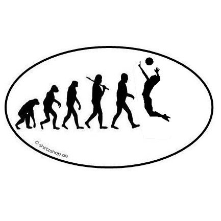 VOLLEYBALL II BEACHVOLLEYBALL VOLLEY BALL EVOLUTION Aufkleber Autoaufkleber Sticker