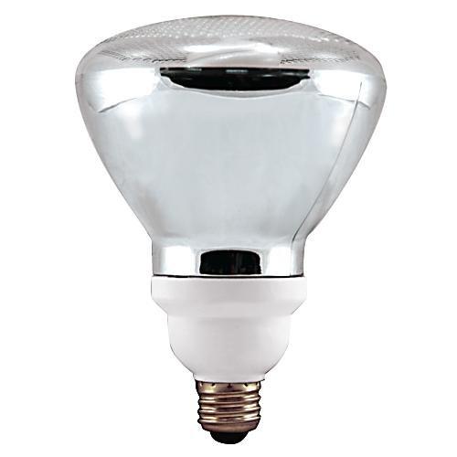 Best Eco Friendly Light Bulbs