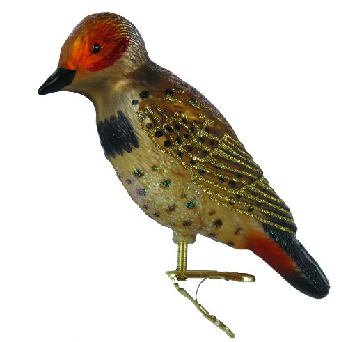 Old World Christmas Northern Flicker Ornament