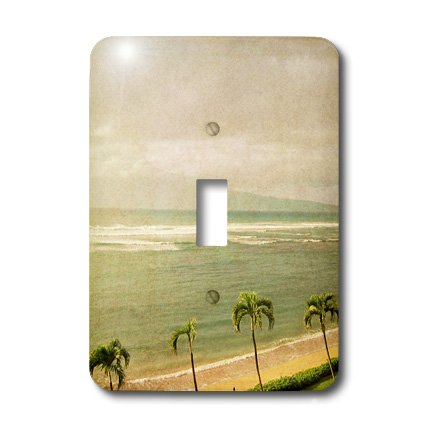Palm Tree Lighting front-429186