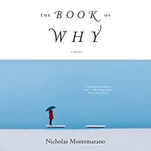 The Book of Why Audiobook