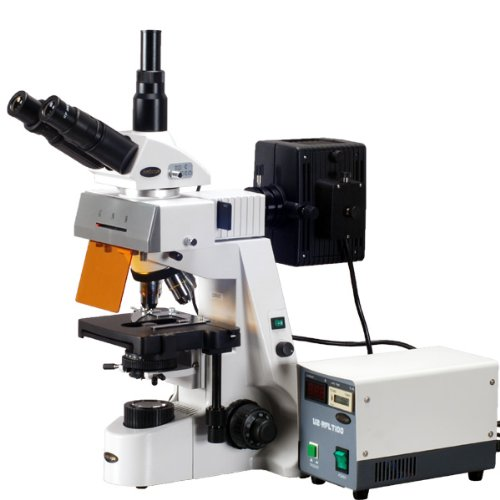 Amscope Fm690Tc Trinocular Compound Epi-Fluorescence Microscope, Wh10X And Wh25X Extreme Widefield Eyepieces, 40X-2500X Magnification, Brightfield, 30W Halogen Illumination, Abbe Condenser, Double-Layer Mechanical Stage, Anti-Mold, 110V, Includes 4 Infini