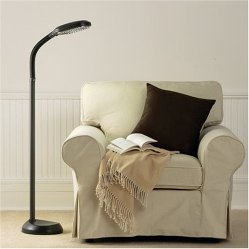 verilux original natural spectrum deluxe floor lamp graphite health. Black Bedroom Furniture Sets. Home Design Ideas