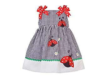 Rare Editions Baby Girl 2pc Gingham Ladybug Dress Set (3m-24m)