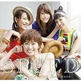 ヒマワリ -Growing Sunflower--SPEED