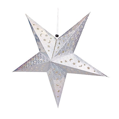 Chunlin 3D Laser Star Paper Lantern Lampshade Hanging Wedding Xmas Home Decor (30CM Silver)